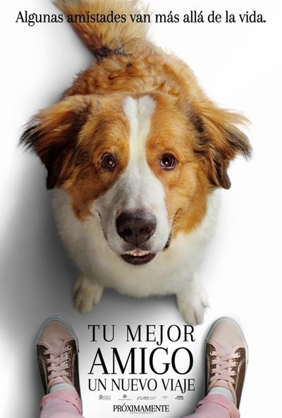 Tu mejor amigo: un nuevo viaje  Drama / 2019 / EE.UU / 108 minutos